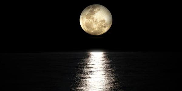 月が水面を照らしている写真