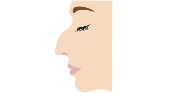 鷲鼻の女性の横顔