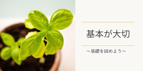 植木鉢に植わった葉っぱ